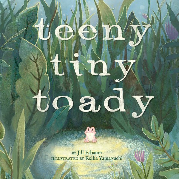 TeenyTinyToady
